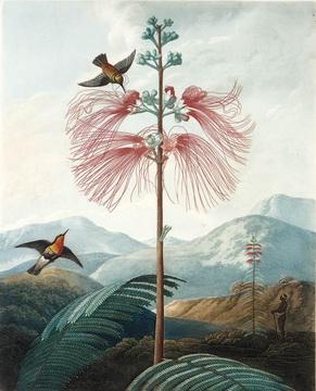 Philip Reinagle Paintings
