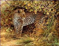Leopard Paintings