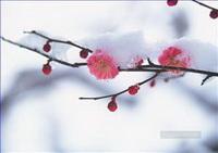 Photorealism Flowers Paintings