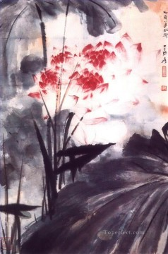 Chang dai chien lotus 13 traditional Chinese Oil Paintings