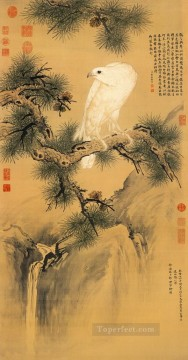 shining Art - Lang shining white bird on pine traditional Chinese