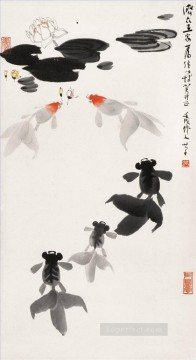 Chinese Painting - Wu zuoren goldfish and water lily traditional China