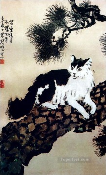 Traditional Chinese Art Painting - Xu Beihong cat on tree old Chinese