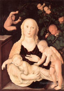 Hans Canvas - Virgin Of The Vine Trellis Renaissance nude painter Hans Baldung