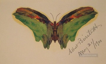 Butterfly luminism Albert Bierstadt Oil Paintings