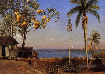 Albert Bierstadt Painting - A View in the Bahamas Albert Bierstadt