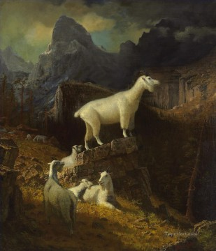 Rocky Mountain Goats Albert Bierstadt Oil Paintings