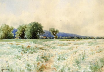 Alfred Thompson Bricher Painting - The Daisy Field Alfred Thompson Bricher