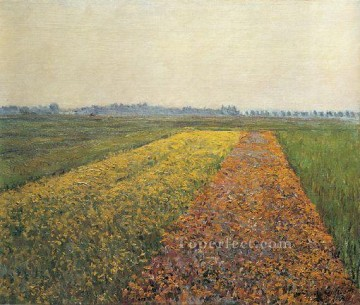 The Yellow Fields at Gennevilliers landscape Gustave Caillebotte Oil Paintings