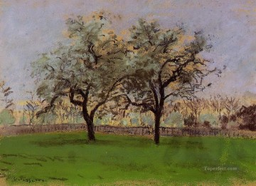 Apples Art - apples trees at pontoise Camille Pissarro
