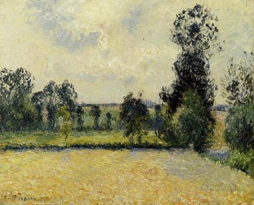 field of oats in eragny 1885 Camille Pissarro Oil Paintings