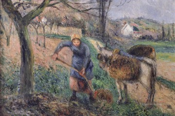 landscape with a donkey Camille Pissarro Oil Paintings