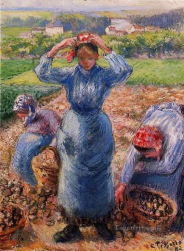 Pot Art - peasants harvesting potatoes 1882 Camille Pissarro