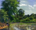 ducks on the pond at montfoucault Camille Pissarro