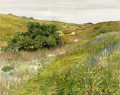 Landscape Shinnecock Hills William Merritt Chase