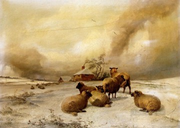 Sheep In A Winter Landscape sheep farm animals Thomas Sidney Cooper Oil Paintings