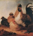 Rooster And Hens countryside painter Aelbert Cuyp