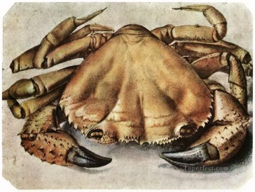 Lobster Albrecht Durer Oil Paintings