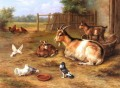 A farmyard Scene With Goats Chickens Doves poultry livestock barn Edgar Hunt