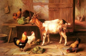 chicken Painting - Goat And Chickens Feeding In A Cottage Interior poultry livestock barn Edgar Hunt