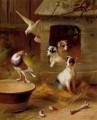 Pigeons And Puppies poultry livestock barn Edgar Hunt