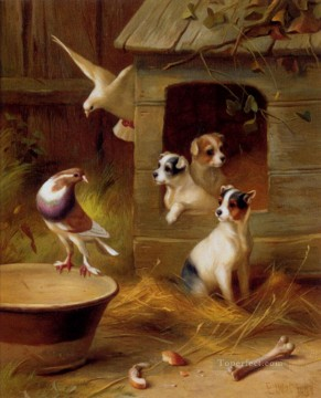 Edgar Hunt Painting - Pigeons And Puppies poultry livestock barn Edgar Hunt
