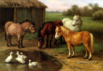Edgar Hunt Painting - Ponies By A Pond poultry livestock barn Edgar Hunt