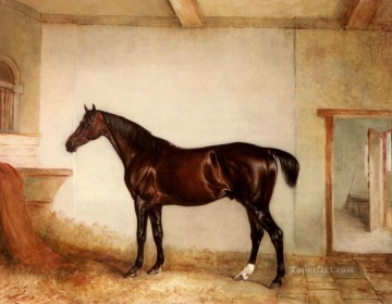 Ferneley Oil Painting - A Bay Hunter In A Loose Box horse John Ferneley Snr