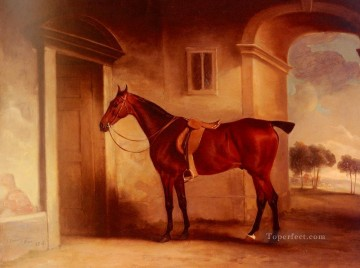 Ferneley Oil Painting - A Saddled Bay Hunter In A Stableyard horse John Ferneley Snr