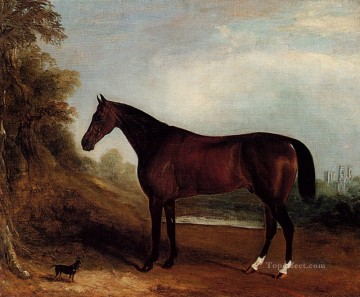 John Ferneley Painting - Father Of Champions horse John Ferneley Snr