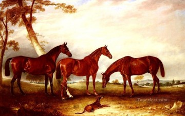 John Ferneley Painting - Marvel Kingfisher And The Lad horse John Ferneley Snr