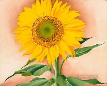 sunflower sunflowers Painting - A Sunflower from Maggie Georgia Okeeffe American modernism Precisionism