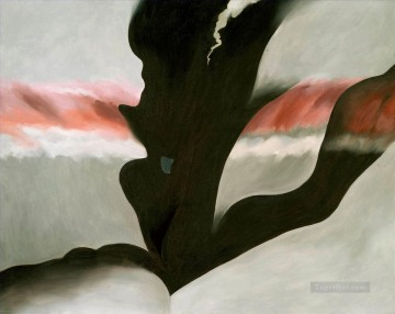 georgia o keeffe black place ll Georgia Okeeffe American modernism Precisionism Oil Paintings