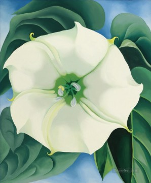 JIMSON WEED WHITE FLOWER NO 1 Georgia Okeeffe American modernism Precisionism Oil Paintings
