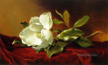 A Magnolia on Red Velvet ATC Romantic flower Martin Johnson Heade Oil Paintings