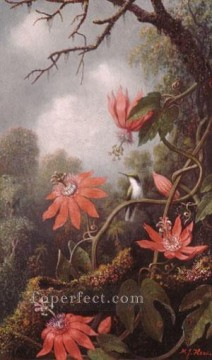 romantic romantism Painting - Hummingbird And Passionflowers Romantic flower Martin Johnson Heade