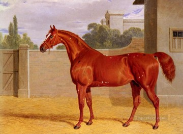 red Oil Painting - Comus Herring Snr John Frederick horse