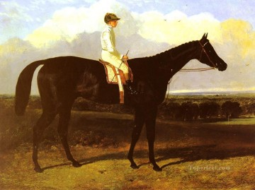 Jonathan Wild Herring Snr John Frederick horse Oil Paintings