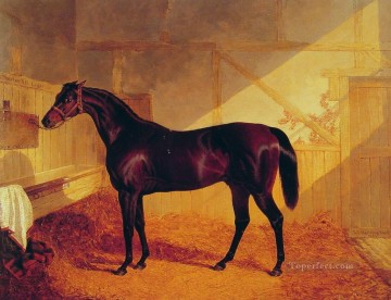 horse Art Painting - Mr Johnstones Charles XII in a Stable Herring Snr John Frederick horse