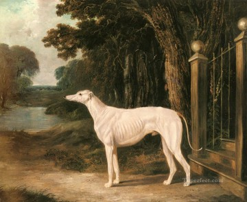 red Oil Painting - Vandeau A White Greyhound 2 Herring Snr John Frederick horse