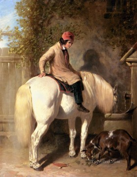 horse Art Painting - Refreshment A Boy Watering His Grey Pony Herring Snr John Frederick horse