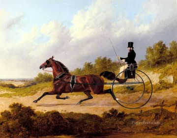The Famous Trotter Confidence Drawing A Gig Herring Snr John Frederick horse Oil Paintings