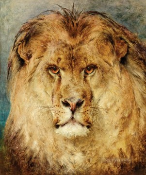 A Lion Head Heywood Hardy Oil Paintings