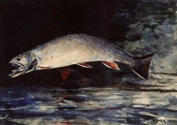 marine Canvas - A Brook Trout Realism marine painter Winslow Homer