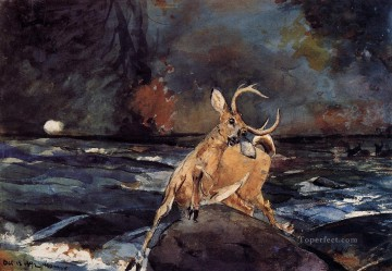 Winslow Homer Painting - A Good Shot Adirondacks Realism marine painter Winslow Homer