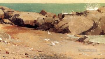 Coast Painting - Rocky Coast and Gulls Realism marine painter Winslow Homer