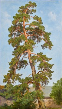 Pine Tree classical landscape Ivan Ivanovich Oil Paintings