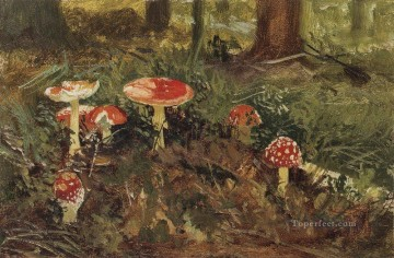 amanita 1879 mushroom Ivan Ivanovich Oil Paintings