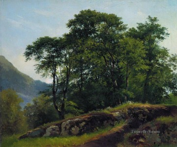 beech forest in switzerland 1863 classical landscape Ivan Ivanovich Oil Paintings