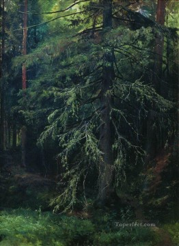 fir 1 classical landscape Ivan Ivanovich Oil Paintings
